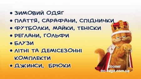 "Магазин дитячого одягу ""Garfield"" - ТРЦ ""Вега"", 2 поверх, бутик № 3"